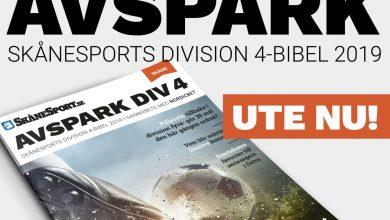 Photo of Ute nu: Avspark – Skånesports division 4-biblar