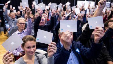 Photo of Skåneboll har gett MFF:s nystartade damlag en plats i division 4