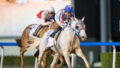 Photo of Skånsktränad häst vann miljonlopp i Dubai