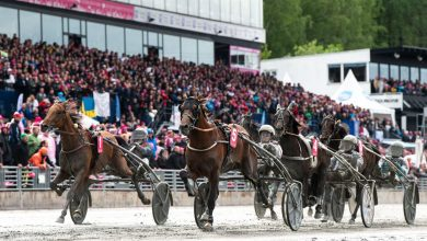 Photo of Elitloppet arrangeras utan publik