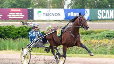 Photo of Fyra hemmahästar först in till Hugo Åbergs