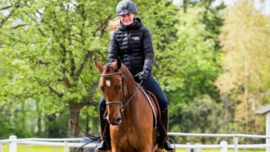 Photo of Ökat intresse för hästutbildningar i Skåne