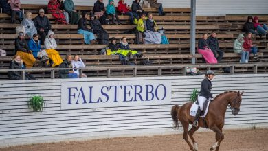 Photo of Ridhjälmstest på Falsterbo Horseshow